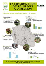 consommation fourragère à la Réunion