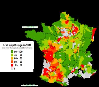 Répartition des vaches laitières au pâturage en France