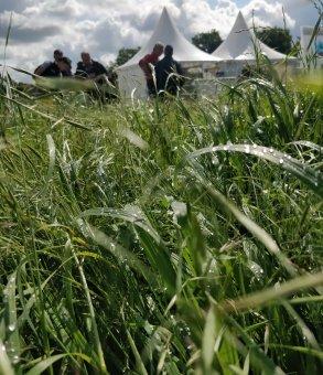 mélange FP au salon de l'herbe