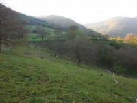 paysage printemps bourg en bresse