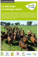 Le pâturage en élevage caprin
