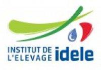 logo Idèle